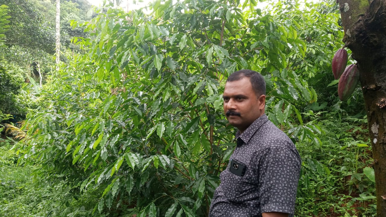 Oud cultivation by Pramod a  Police Officer
