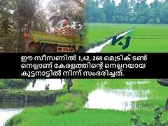 നെല്കൃഷി- എ ടു ഇസഡ് - പാര്ട്ട് -11 - ബാക്ടീരിയല് രോഗങ്ങള്