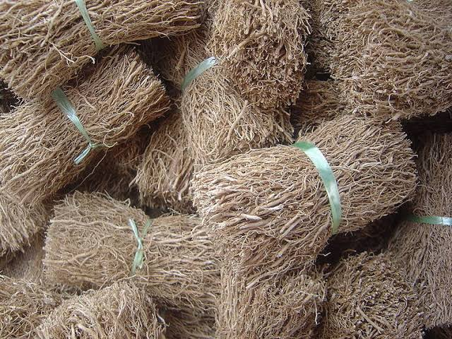 racham dried root