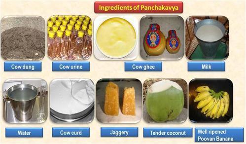 pancha