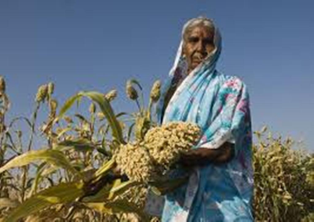 lady farmer at farm