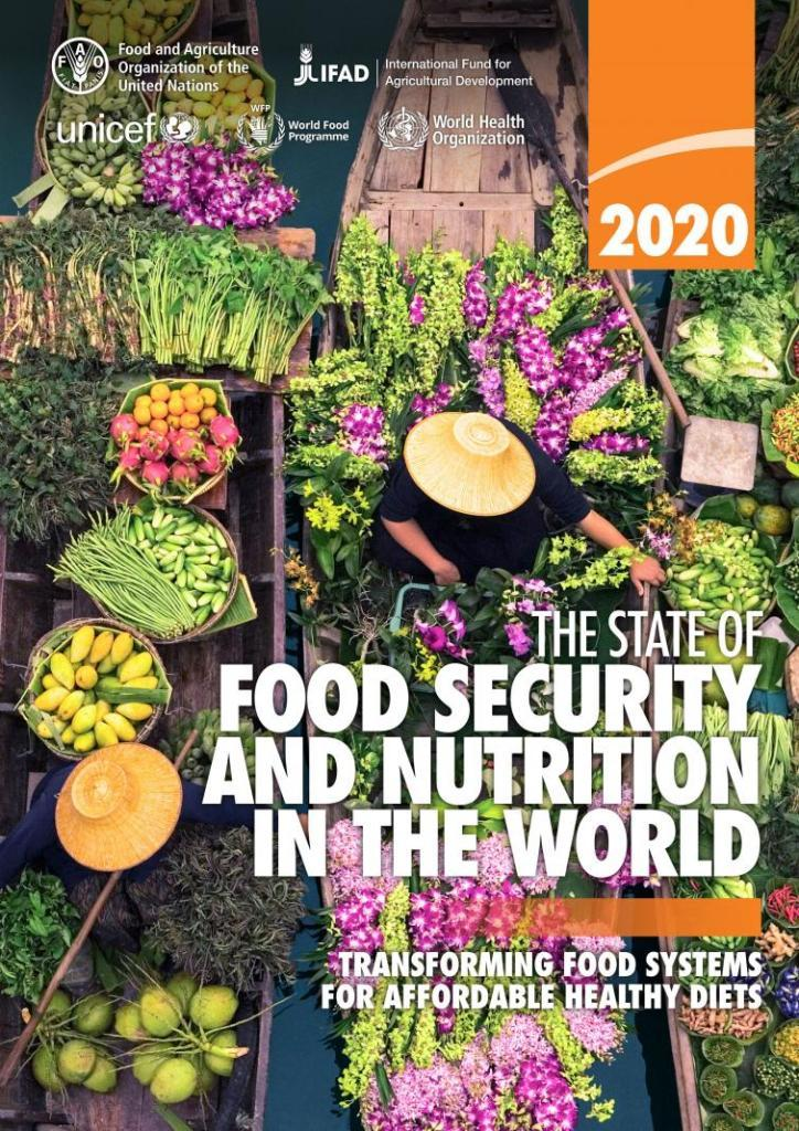 SOFI-2020 cover