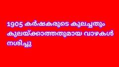 വേനല് മഴ: പത്തനംതിട്ട ജില്ലയില്14.29 കോടി രൂപയുടെ കൃഷി നാശം