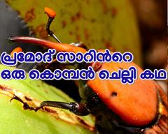 ഒരു കൊമ്പൻ ചെല്ലി കഥയുമായി കൃഷി ഓഫീസർ പ്രമോദ്