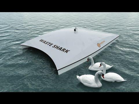 waste shark, dubai