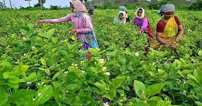tax relief for farmers