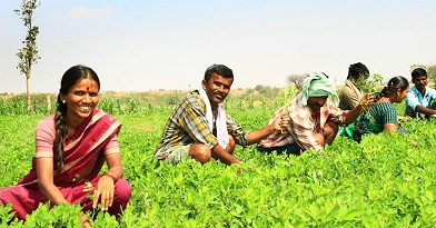 tax relief for farmers1
