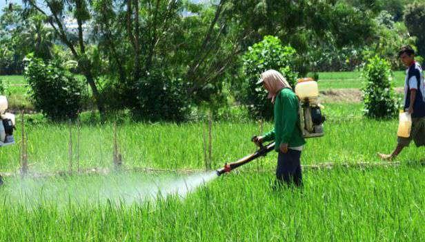 pesticides banned