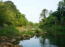 vamanapuram river