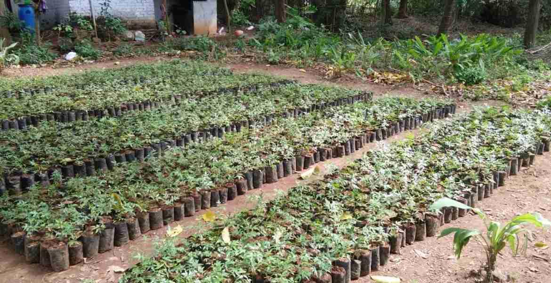 Grihachaithanya project