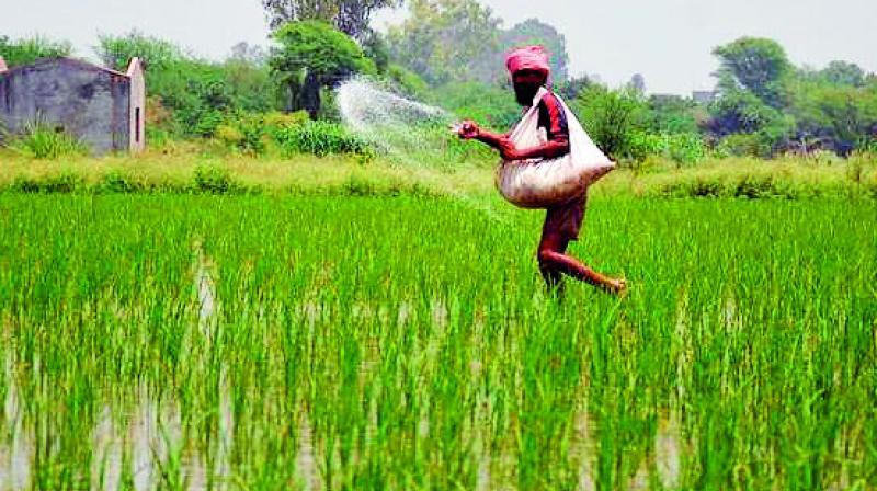 Assam loan waiving