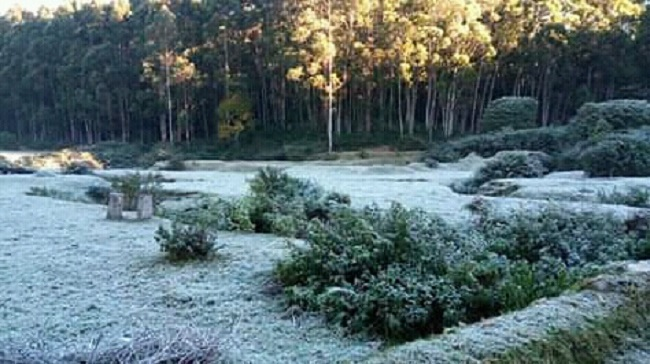 munnar snow fall