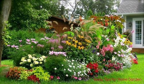 amazing home garden