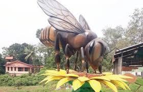 honey bee park