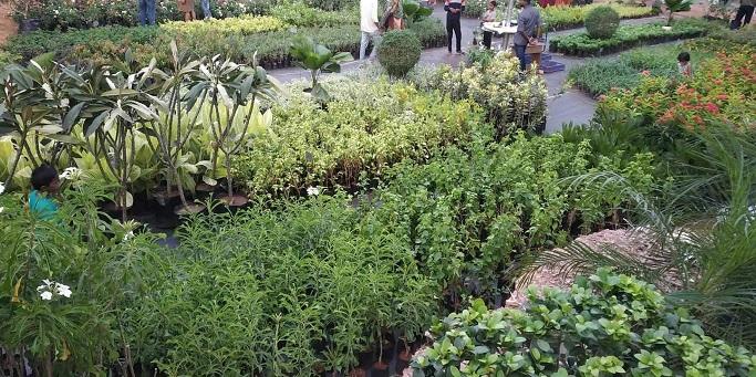 mall of gardens