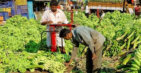 wayanad farmers