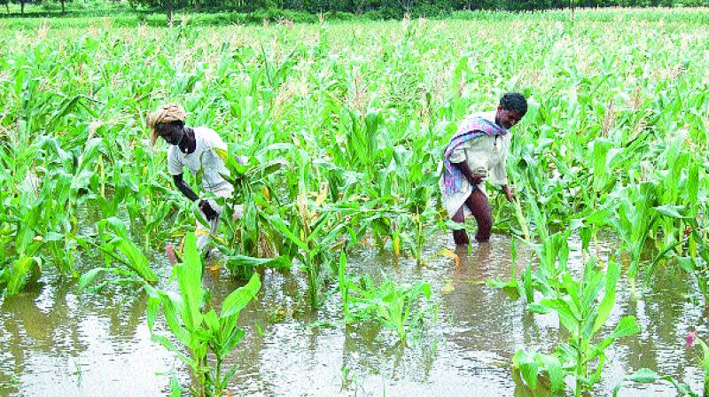 farmers pension
