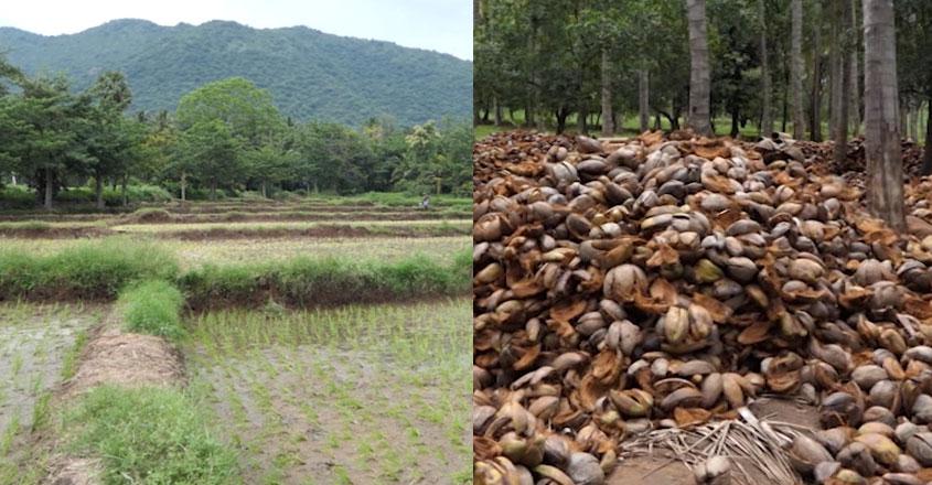 Munthal farming village