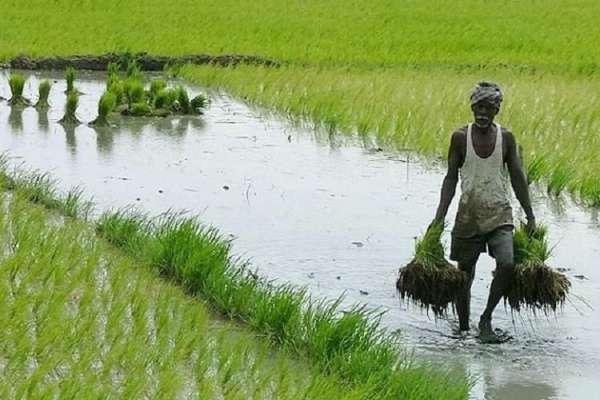 farmers welfare fund