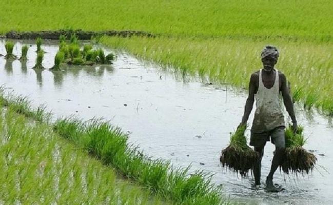agri loans