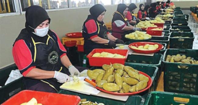 food processing unit