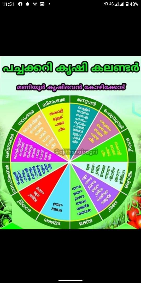 vegetable calender