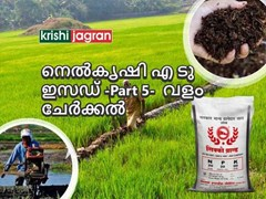 നെല്കൃഷി എ ടു ഇസഡ്(Paddy cultivation -A to Z) Part 5- വളം ചേര്ക്കല്