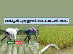 നെല്കൃഷി -എ ടു ഇസഡ് (Paddy cultivation -A to Z) ഭാഗം-6- ജലപരിപാലനം