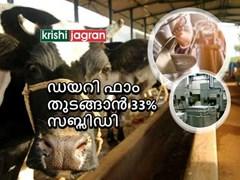 നിങ്ങൾക്ക് ഒരു  ഡയറി ഫാം തുടങ്ങാൻ    കേന്ദ്ര സർക്കാർ പദ്ധതി   7 ലക്ഷം രൂപ ലോൺ  • 33% സബ്സിഡിയും   ലഭ്യമാണ്