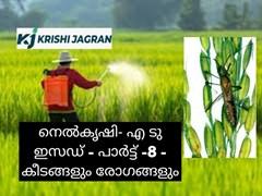 നെല്കൃഷി- എ ടു ഇസഡ് (Paddy cultivation- A to Z ) പാര്ട്ട് -8 - കീടങ്ങളും രോഗങ്ങളും